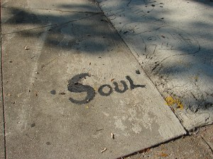 soul in web hosting