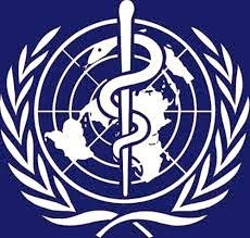 WHO Symbol Lessons to be Learned from Healthcare .gov