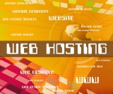 Important Web Hosting Criteria