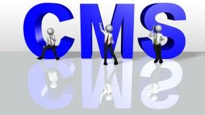 DotCMS hosting