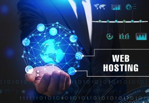 The hosting companies listed below set up the hosting environment to suit the needs of the customer.  System: The companies listed offers a variety of Operating System to clients to choose for dedicated servers. The client can also choose control panels like cPanel or Plesk and web server software like Apache or NGINX.  Handling crisis: During chronic server downtime or hacking activity  Security: Update Servers fully and implement changes to infrastructure and software with improved technologies.  Provide knowledge base/Training: Regular upgradations of plugins and scripts.  Backup Service: Reliable and regular online backup services on different remote servers.  CDN: To serve static resources like images, CSS, and other rich media as quickly as possible.  Caching: With Varnish Cache, over https 60 micro-seconds of TTFB (time to the first byte) can be achieved for optimal performance.  SSD (Solid State Drive) Technology: It is taking over traditional, less-reliable hard-drive based storage systems by dramatically decreasing any chance of corruption or loss of data. The SSD offers fast transfer speed.  DDoS (Distributed Denial of Service) protection: An extra layer of protection.  Top 10 Cheap Professional Web Hosting