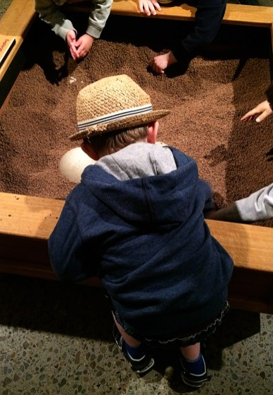 Ananyah- Hatching the Patch- Kelvingrove- Digging for fossils