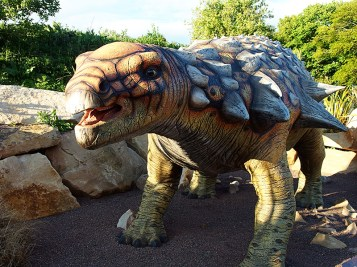 Edinburgh Zoo Nights-Edmontonia
