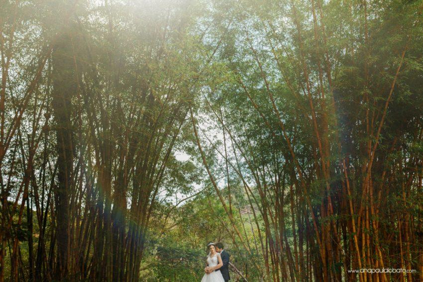 pos wedding rainbow
