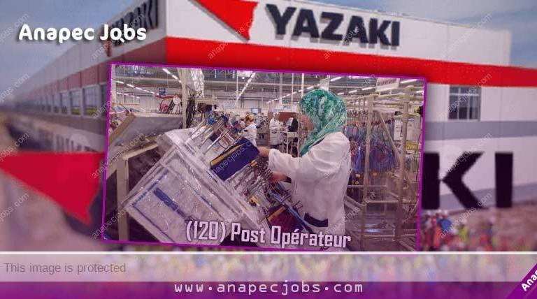 (120) Opérateur Sur Machines Automatiques De Cablagesur MEKNES-EL MENZEH