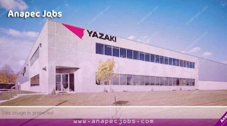 شركة يازاكي .. تشغيل 200 عاملة وعامل كابلاج بمدينة مكناس
