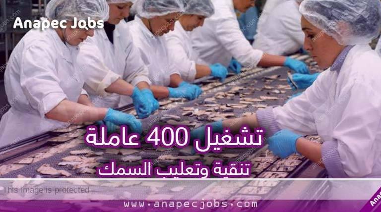 شركة متخصصة في تعليب السمك تعلن عن تشغيل 400 عامل وعاملة تنقية وتعليب السمك