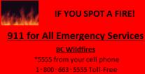 If you spot a fire