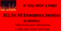 If you spot a fire