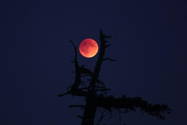moonrise_eclipse1_sept_27_2015