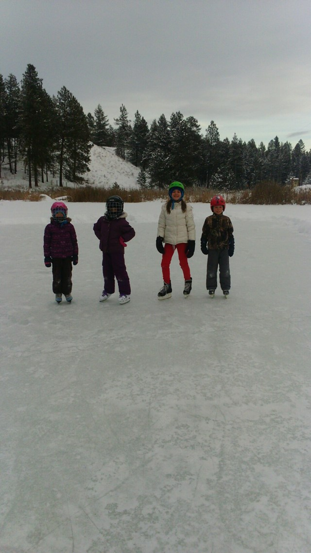 Skating on the Pond by Chelsey Gray