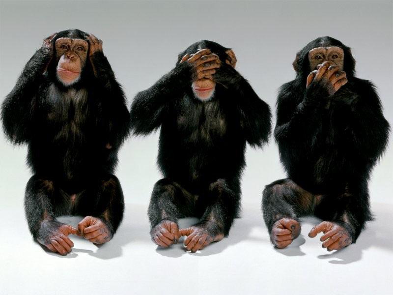 monkeys three see hear speak