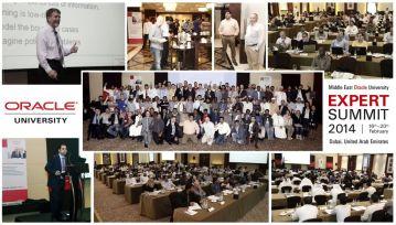 Expert-summit-collage