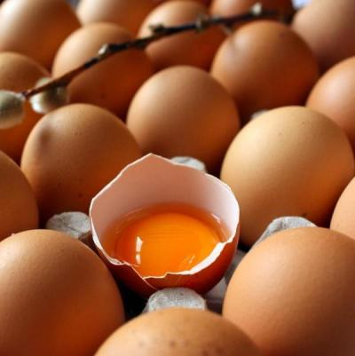 kebaikan telur sumber protein