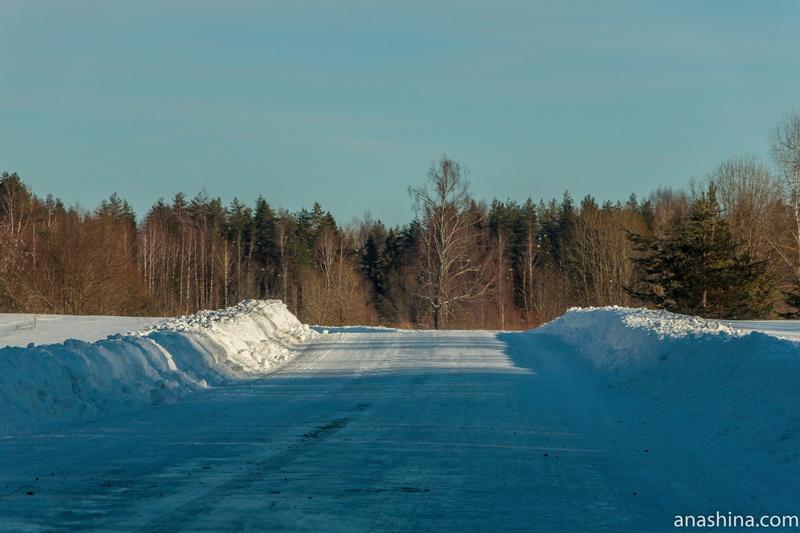 Лесная дорога, Костромская область
