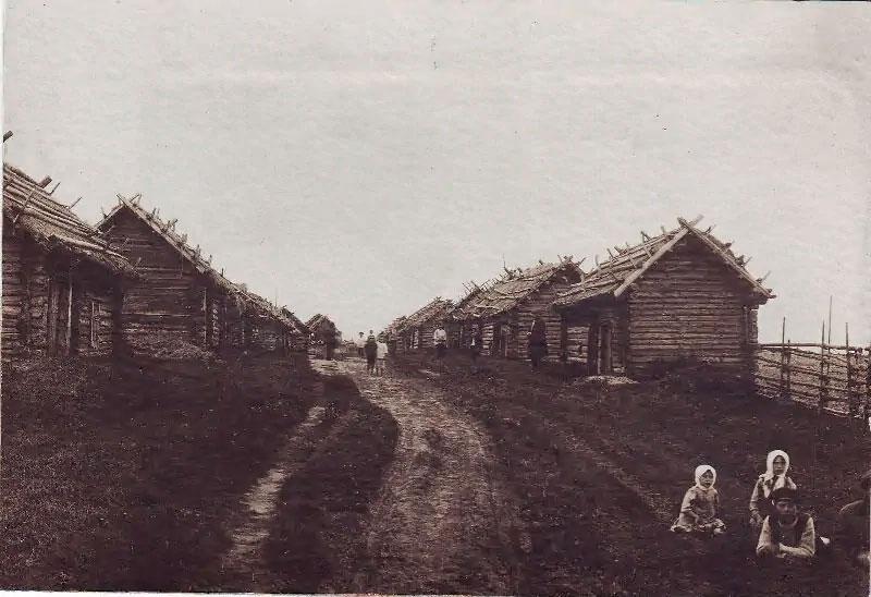 Сараи и бани в деревне Низовка. Источник: pastvu.com