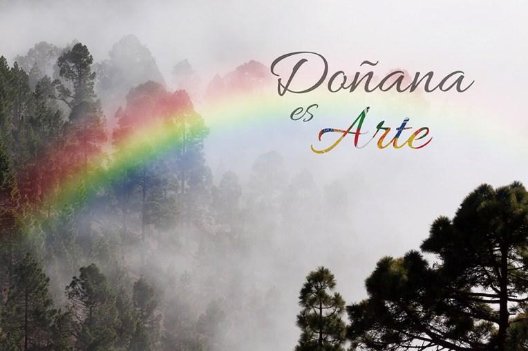 Bosque con arco iris y título Doñana es Arte