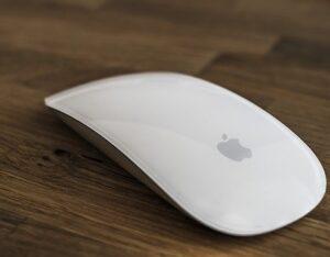 mouse kya hai