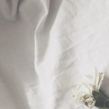 old linen & carnation via anastasiabenko.com