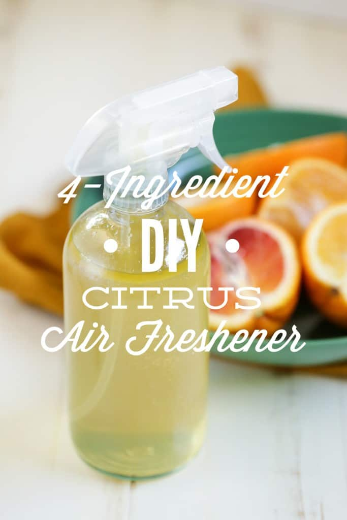 DIY Citrus Air Freshener - Cleaning Hacks. Learn how to use these easy natural cleaning products for home - cleaning tricks and tips for lazy people. Deep cleaning and professional tips and tricks. #cleaning #hacks #cleaningtips #tips #house #homedecor