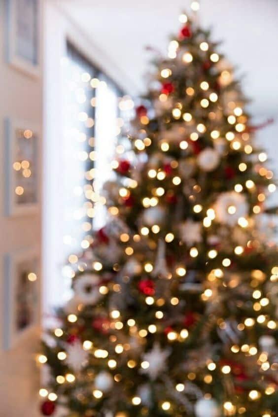 Christmas Aesthetic - Cozy Lights Disney Vintage Christmas ...