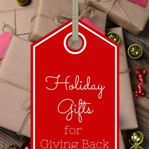 Holiday Gifts for Giving Back