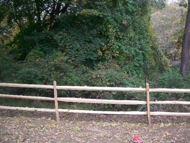 Deer Fences 4