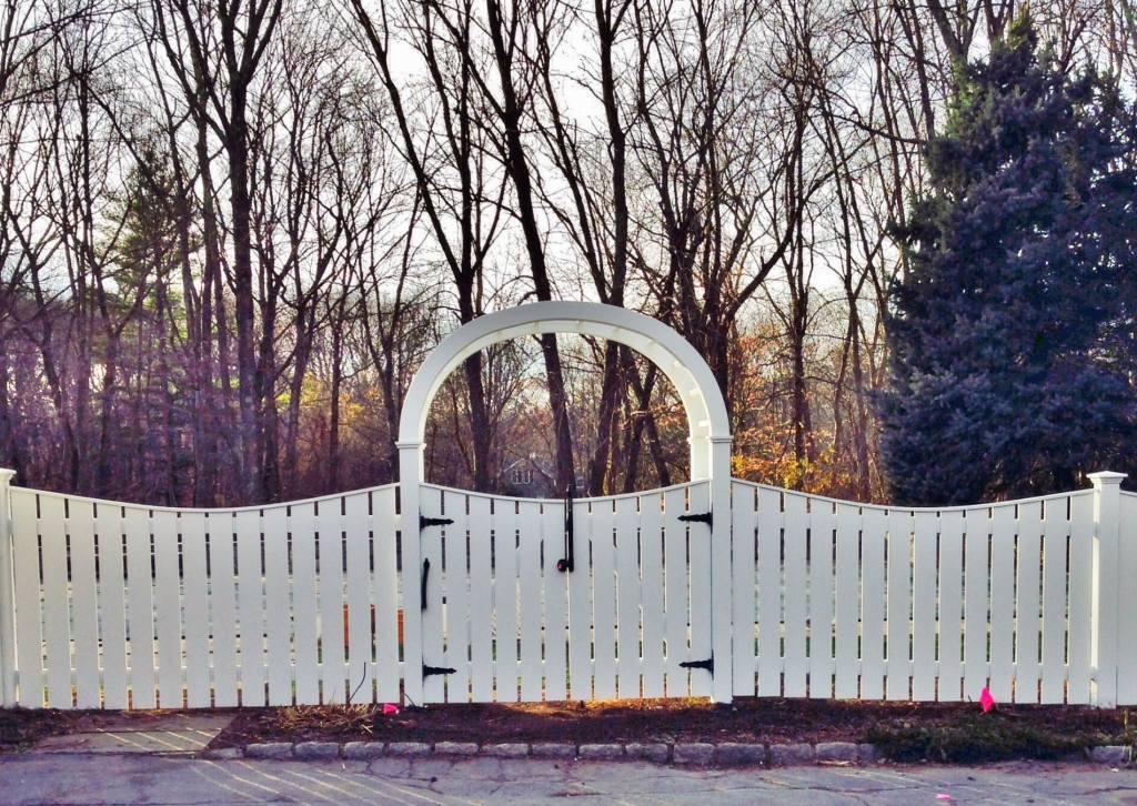 Picket Fences 6