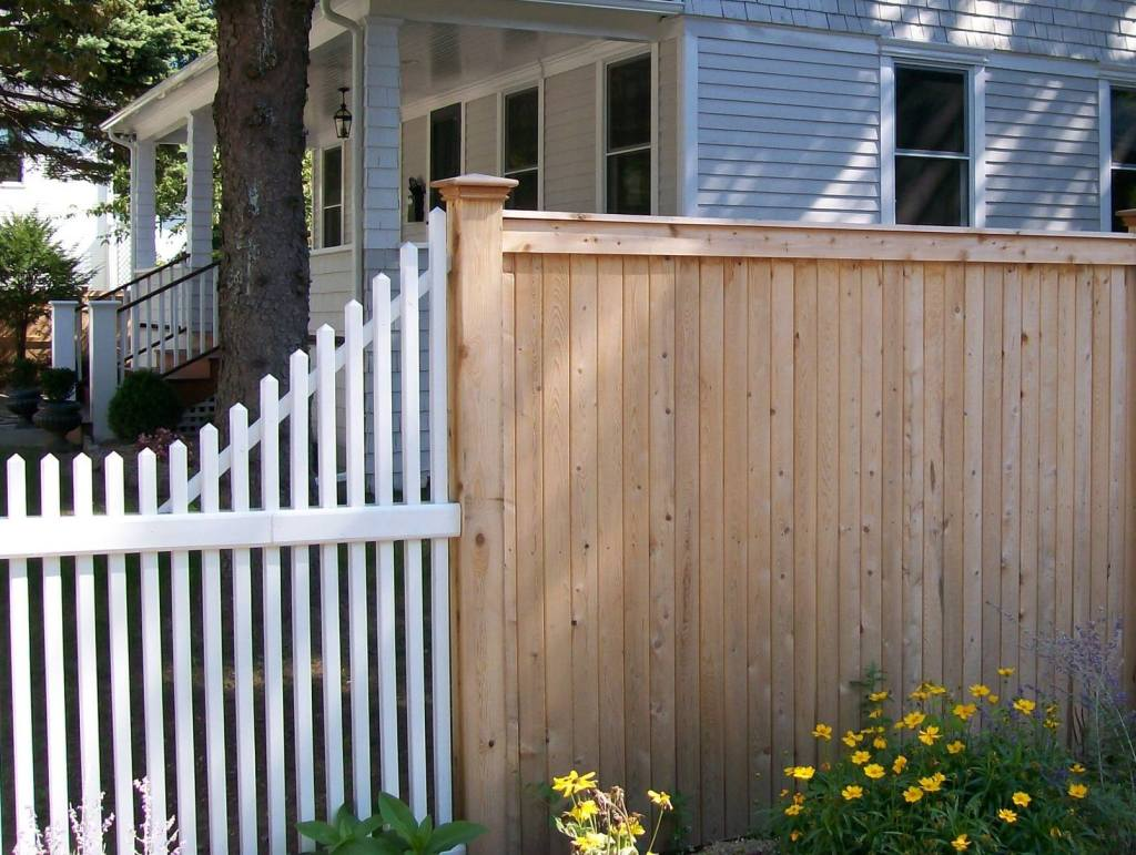 Picket Fences 8