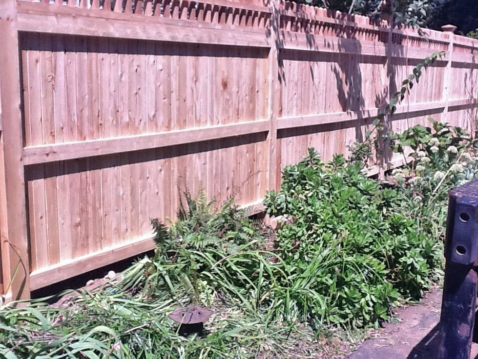 Tongue and Groove Fences 15