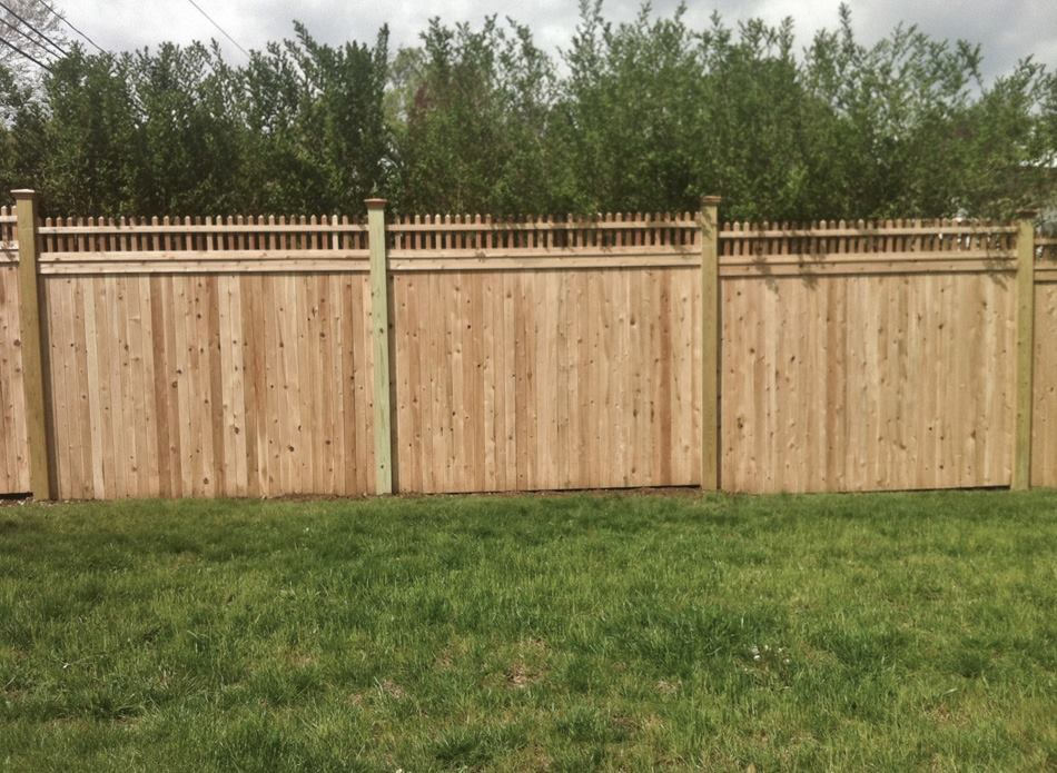 Tongue and Groove Fences 6