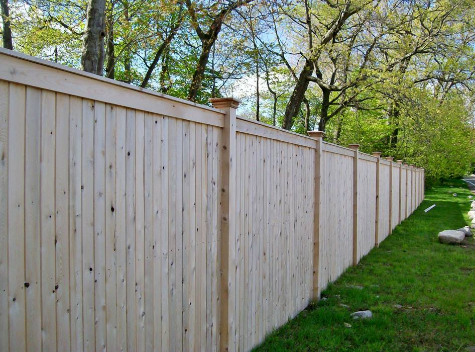 Tongue and Groove Fences 8