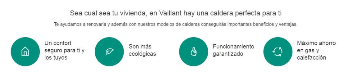 vaillant-descripcion