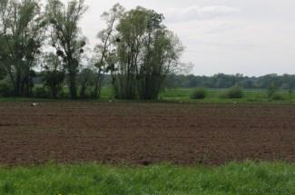 mars-sur-allier33