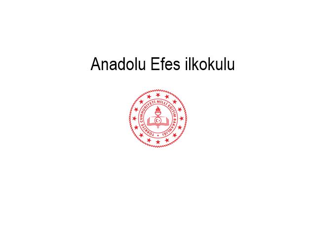 Adana Anadolu Efes Primary Education
