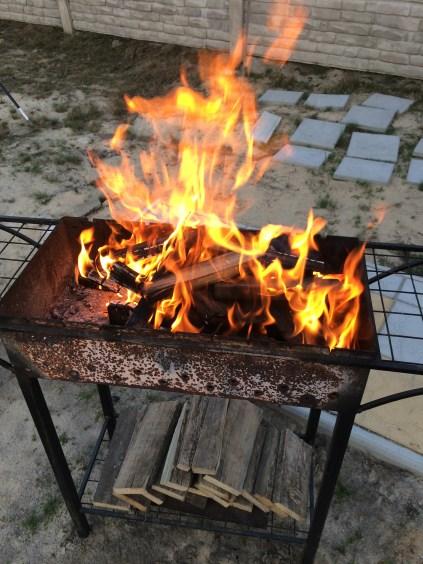 мясо_питание_секер_долголетие_огонь