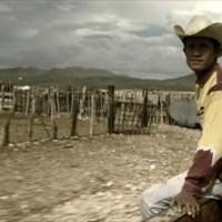 El documental y su público en México por Rodolfo Peláez*