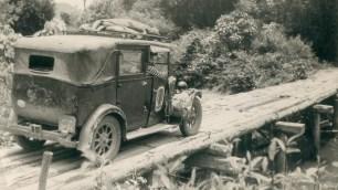 Alfred taxi jungle bridge copy