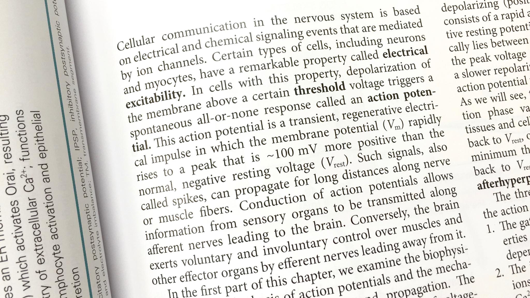文章の例。神経生理学の章の冒頭