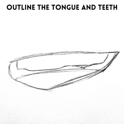 Outline the inside of the mouth