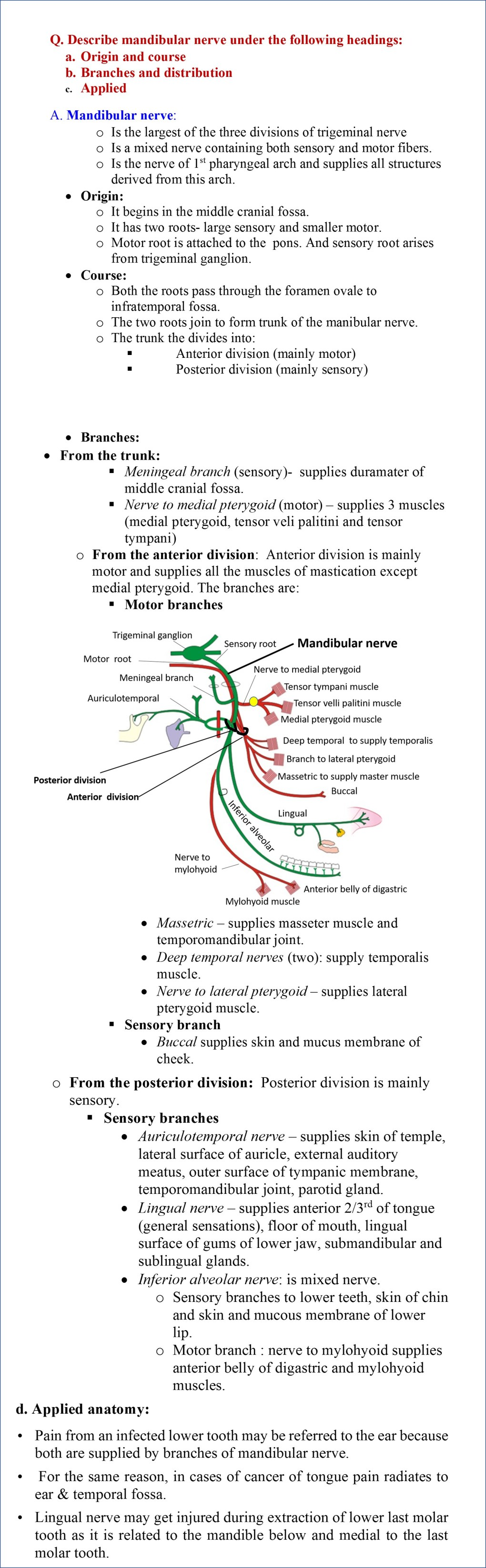 Mandibular nerve - course, branches and distribution