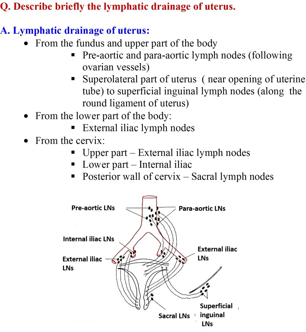 Lymphatic drainage of Uterus