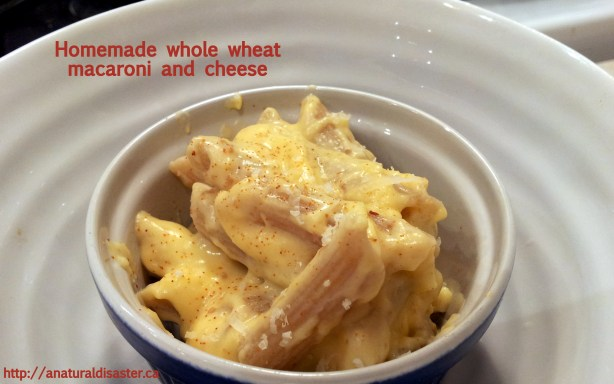 Small bowl of macaroni and cheesese