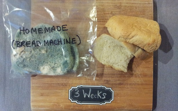 Homemade bread machine bread after three weeks in plastic (left) and paper (right)