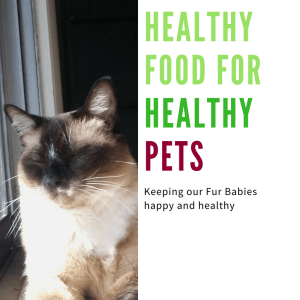 Healthy Pet Food Grain Free