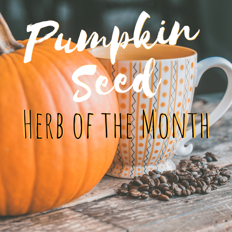 Herb of the Month, october