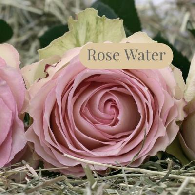 Mature Skin Toner with Rose Hydrosol
