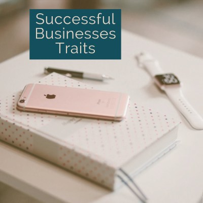 6 Common Traits of Successful Businesses