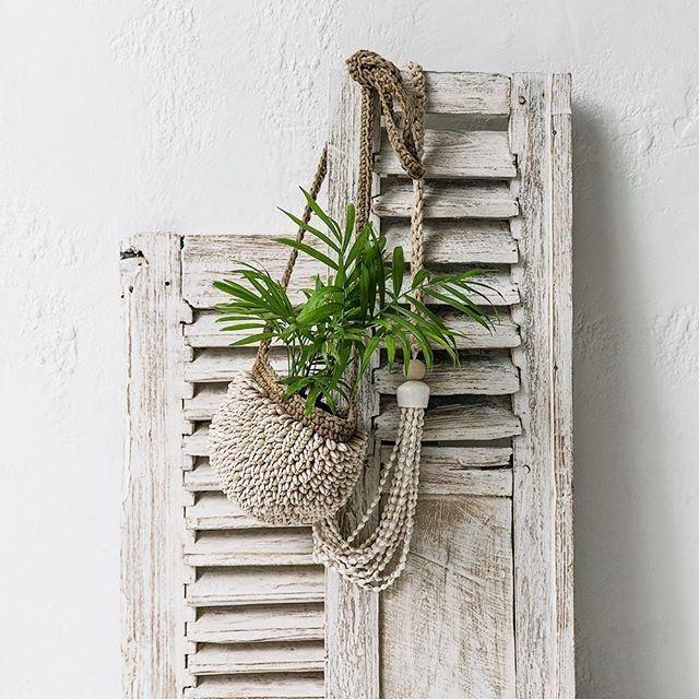 Elementos decorativos que transmitan frescura al ambiente
