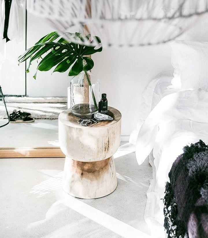 Decora tu casa en verano con plantas, tendrás alegría y frescura al instante